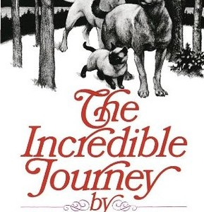 فروش کتاب the incredible journey