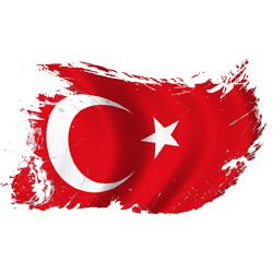 آموزش زبان ترکیه ای